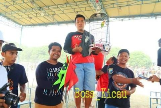 "Love Bird ""Utun"" Juara Hatrick di Piala Sri Aji Joyoboyo Kediri"